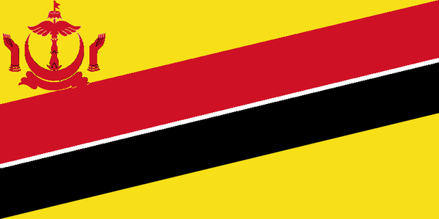 File:Flagbrunei.png