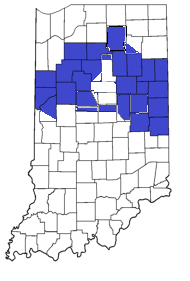 File:Republic of Indiana Counties.png