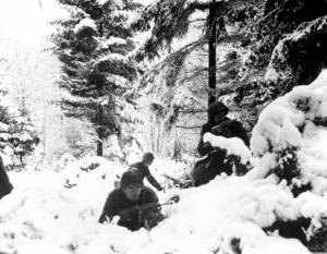 Americans in bastogne