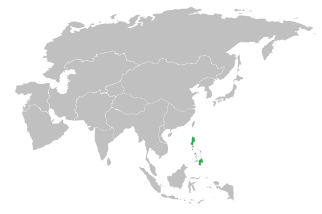 File:Fifth Burmese Nation Philippines.png