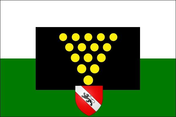 File:10. State Flag of Gogledd Hylio Gyda Tir v2.jpg