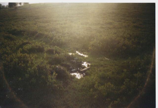 File:AvAr The marsh in Eijko, sweden.jpg