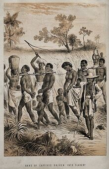 Group of men and women being taken to a slave market Wellcome V0050647