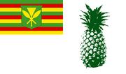 PineappleFlag Eman