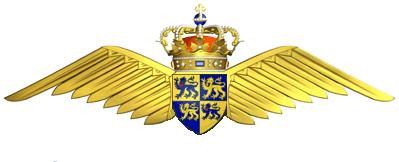 Royal Welsh Airforce Badge