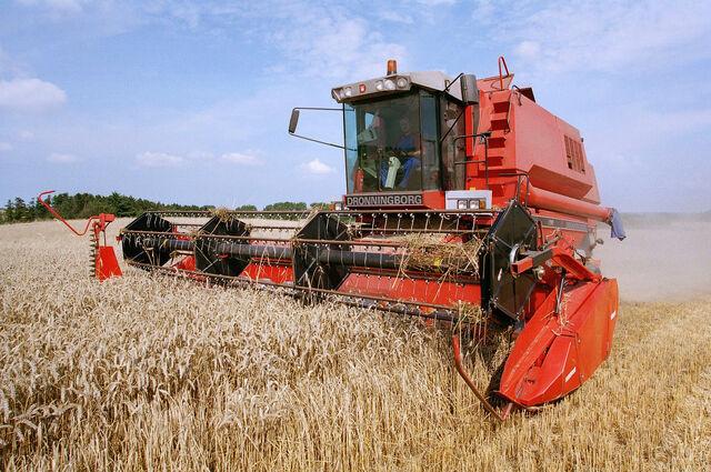 File:Danish farming - grain production.jpg