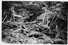 Battle of Messines - destroyed German trench