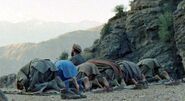Mujahideen prayer in Shultan Valley Kunar, 1987