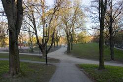 Syksyn Park