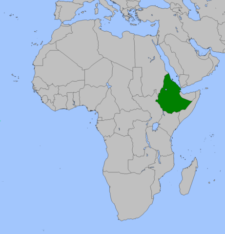 File:Ethiopia (Alternity).png