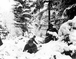 Battle of Siberia