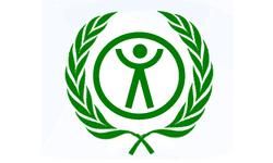 Alternative Refugee Organization