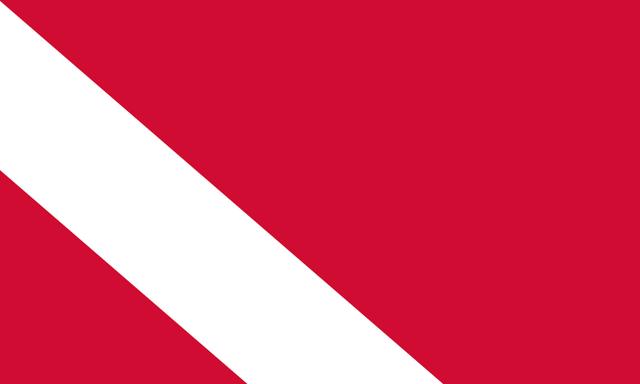 File:Danmarkflag.png