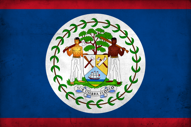 File:Grunge Flag of Belize by pnkrckr.png