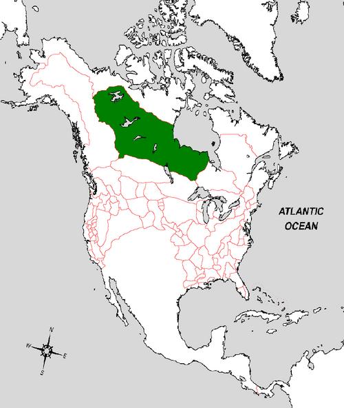 Keewatin Map (the Kalmar Union)