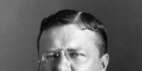 Theodore Roosevelt (King of America)