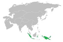 Fifth Burmese Nation Majapahit