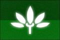 PACflag