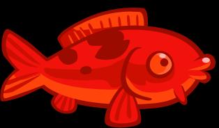 File:Red koi fish.png