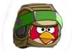 File:Red Bird (Luke Skywalker Endor).jpg