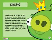 King Pig Toy Care