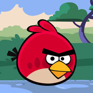 Angry-birds-school-icon