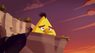 THE BIRD THAT CRIED PIG CHUCK THINKING
