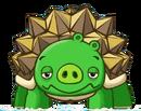 TurtlePig