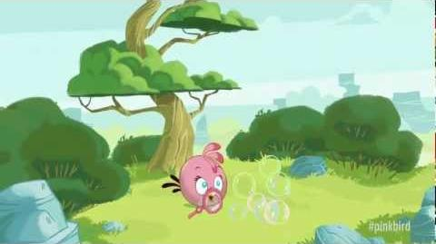Meet the Pink Bird A new member of the Angry Birds!