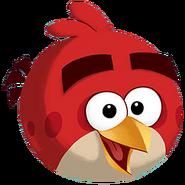ABActivityPark BirdImage1