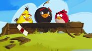Angry Birds Friends Teaser