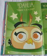 Annual Book Dahlia 1
