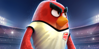 Angry Birds Goal!/Gallery