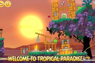 File:Angry-Birds-Seasons-Tropigal-Paradise-Image-4-310x207.jpg