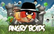 Angry boids