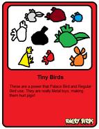 Tiny Card
