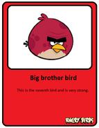 Big-red-card