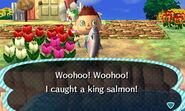 King salmon new leaf 2