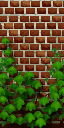 File:Wallpaper ivy wall.png