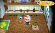 Inside garden shop nook bros