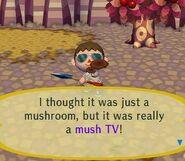 MushTV