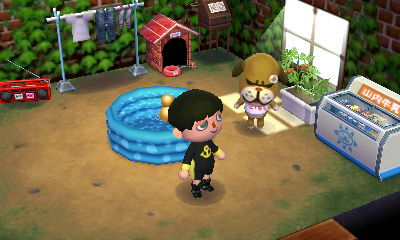 Brutus animal crossing wiki fandom powered by wikia for Extension maison animal crossing wild world