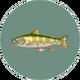 Cherry Salmon (City Folk)