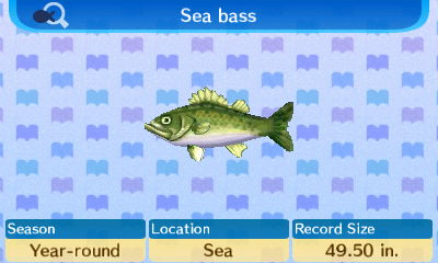 File:Sea bass (New Leaf).jpg