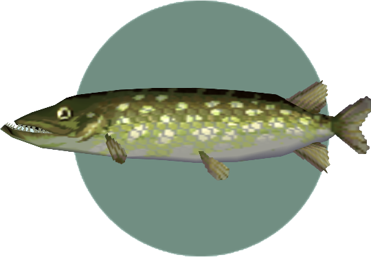 File:Pike (City Folk).png
