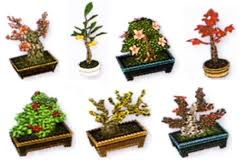 File:Bonsai Set.jpg