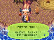 Arowana (Animal Forest caught)