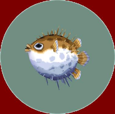 File:Puffer Fish (City Folk).png