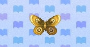 Moth encyclopedia (New Leaf)