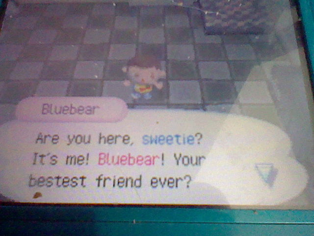 File:Bluebear visiting in.JPG